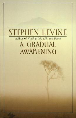 A Gradual Awakening By Levine, Stephen